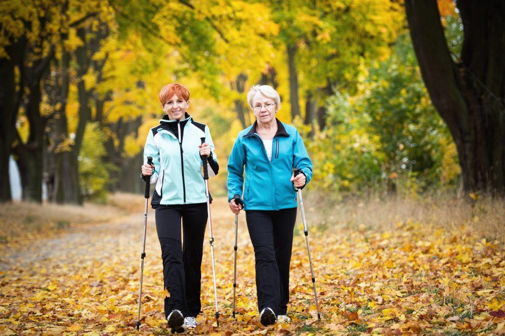 Women walking in woods with sticks